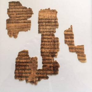 Fouad Papyrus